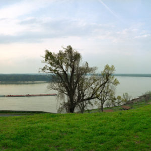 At the time of the Civil War, the CS Navy blockaded the river while the Federals tried to get gunships past the Vicksburg heights to take the war to the heartland of the Confederacy. Mississippi River below Vicksburg.