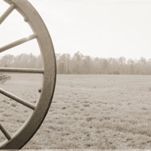 2002 : The Cannons of Malvern Hill. At the time of the battle there were 250 cannons lined up hub to hub here. It was a slaughter.