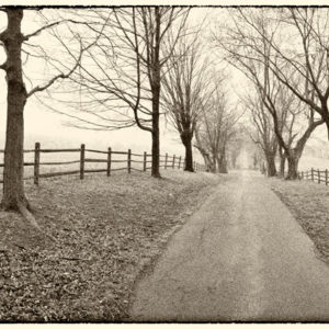 2012 : Araby Lane. The Thomas farm became Monocacy Battlefield in 1864, while the people hid in the basement.